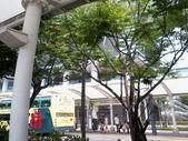 2011.6.4-6.5 高雄西子灣:相片390.jpg