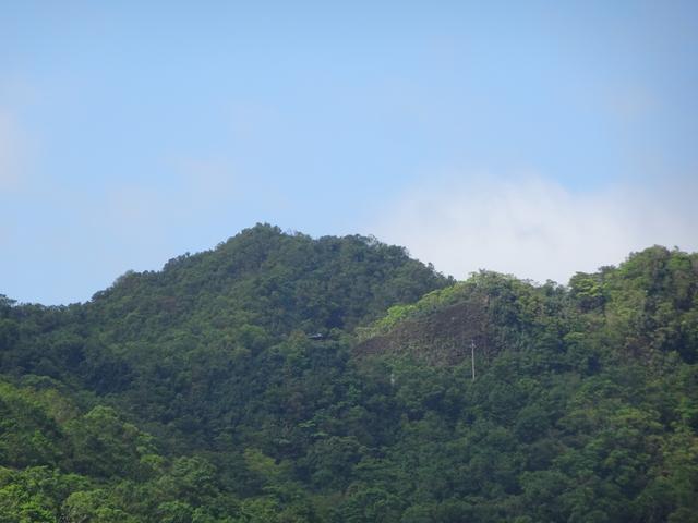 DSC04967.JPG - 2015.9.25 啞巴嶺 丁子蘭坑 多層山田仔