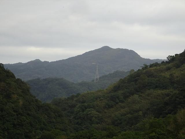 DSC01088.JPG - 2019.11.29 組合山 東峰 東山腰 鞍部四岔 獵徑切回稜 秘境 耘夢谷對岸路線