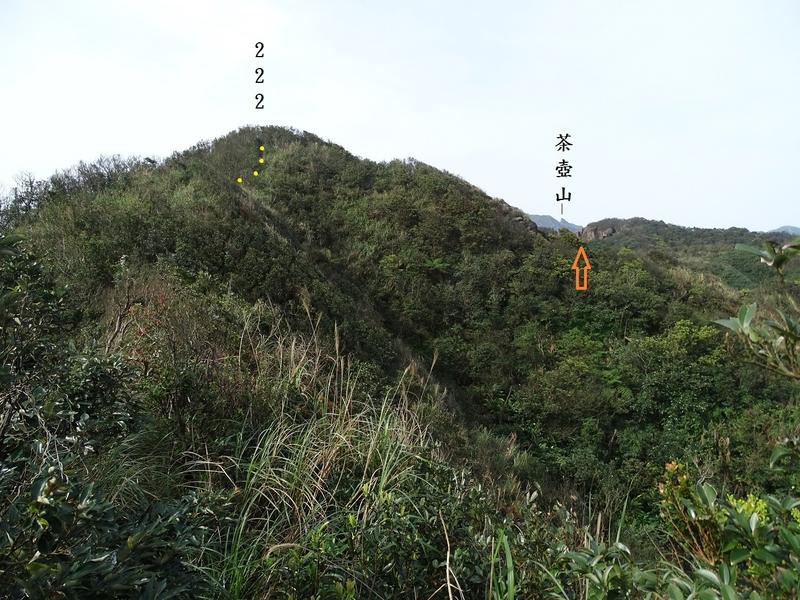 DSC05405-1.jpg - 2016.3.4 鼻頭山稜、南雅山、苦命嶺、北勢坑站