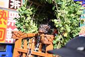 第一千零七十九期   台南市草寮後菱洲宮玄天上帝歲次己亥年三朝謝恩祈安清醮大典恭送天師回鑾遶境:DSC_4787.JPG