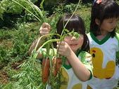 2009 Field Trip校外教學:DSCF4430.JPG