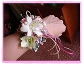 2006.11.11 日本太太結婚囉!:11019