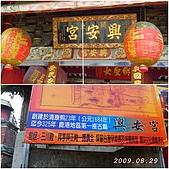 2009年到處玩(7-8月):鹿港 興安宮cats.jpg