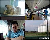 2009年到處玩(7-8月):基隆行 西胡休息站3cats.jpg