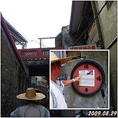 2009年到處玩(7-8月):鹿港 十宜樓cats.jpg