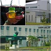 2009年到處玩(7-8月):鹿港 白蘭氏參觀贈送cats.jpg