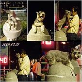 2009年到處玩(7-8月):高雄 愛之船 你真的愛我嗎cats.jpg