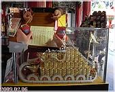 2009到處吃到處玩(1-2月):日月潭 文武廟4cats.jpg