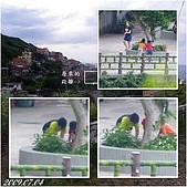 2009年到處玩(7-8月):基隆 黃金瀑布 連拍cats.jpg
