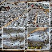 2010.05.15~05.17澎湖行:澎湖1 我們在鳥嶼 曬魚cats.jpg