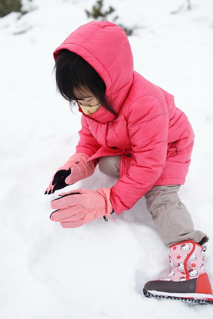 20130223 劉小妮的北海道之旅:IMG_6981.JPG