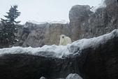 20130223 劉小妮的北海道之旅:IMG_8335.JPG