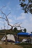 [露營24] 日麗風合@嘉義梅山瑞峰:DSC01217.JPG