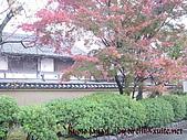蜜月日本行_Day1京都:01033