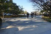 2019日本玩雪行_Day2:DSC02071.JPG