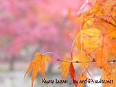 蜜月日本行_Day1京都:01037