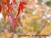 蜜月日本行_Day1京都:01039
