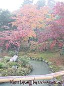 蜜月日本行_Day1京都:01076_2