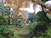 蜜月日本行_Day1京都:01087