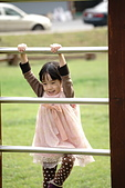 [2016] 一月份:玉山路賞花00019.JPG