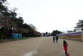 2019日本玩雪行_Day3:DSC02321.JPG