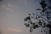 Sony A7II 拍照紀錄:文化公園006.JPG