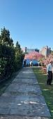櫻花公園:20210207_085545.jpg