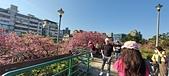 櫻花公園:20210207_085729.jpg