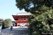 日本 鐮倉江之島:1014.jpg