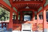 日本 鐮倉江之島:1017.jpg