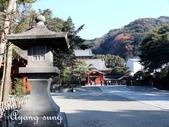 日本 鐮倉江之島:1007.jpg