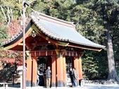 日本 鐮倉江之島:1008.jpg