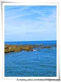 【台東】台11線152.5餵魚區:wqkVXrdHIhbjUQZPxC5a9g.jpg