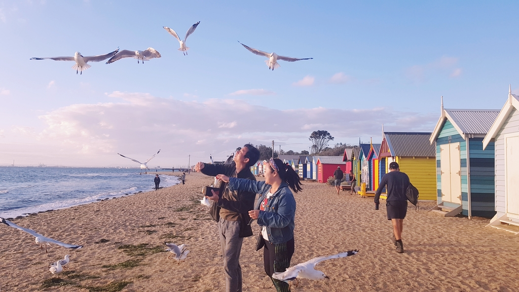 20190213_194239.jpg - 【澳洲.墨爾本】2019免費景點。Brighton Beach Bath Boxes 海邊彩色小屋