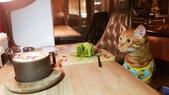【台北.大安區】舒服生活 Truffles Living寵物友善餐廳。調酒.咖啡.甜點.牛肉麵:20190523_202540.jpg