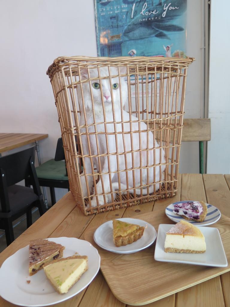 IMG_2770.JPG - 【台北.天母】芝山站下午茶推薦。我思.私宅甜點 w.a.s house溫馨手做甜點。歡迎貓咪寵物進入