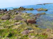 【台北】北海岸石門洞景點。美麗的貝殼砂海灘。熱門觀看夕陽&潮間帶景點:IMG_9617.JPG