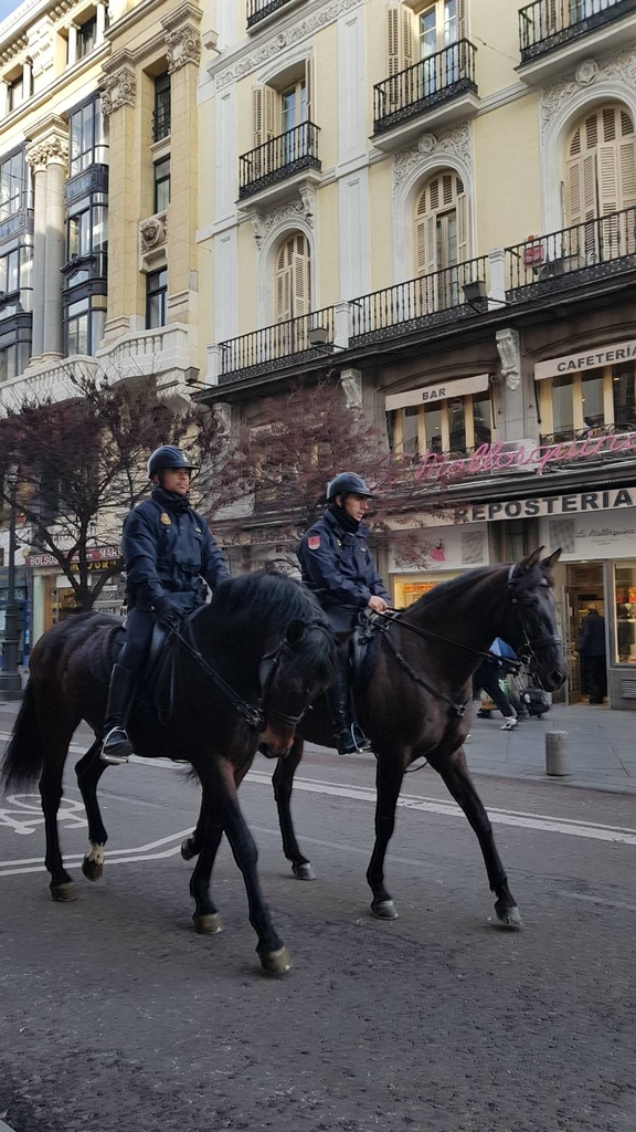 133561.jpg - 【西班牙】2020馬德里太陽門廣場散散步。Meson del champinon很棒的餐廳值得推薦
