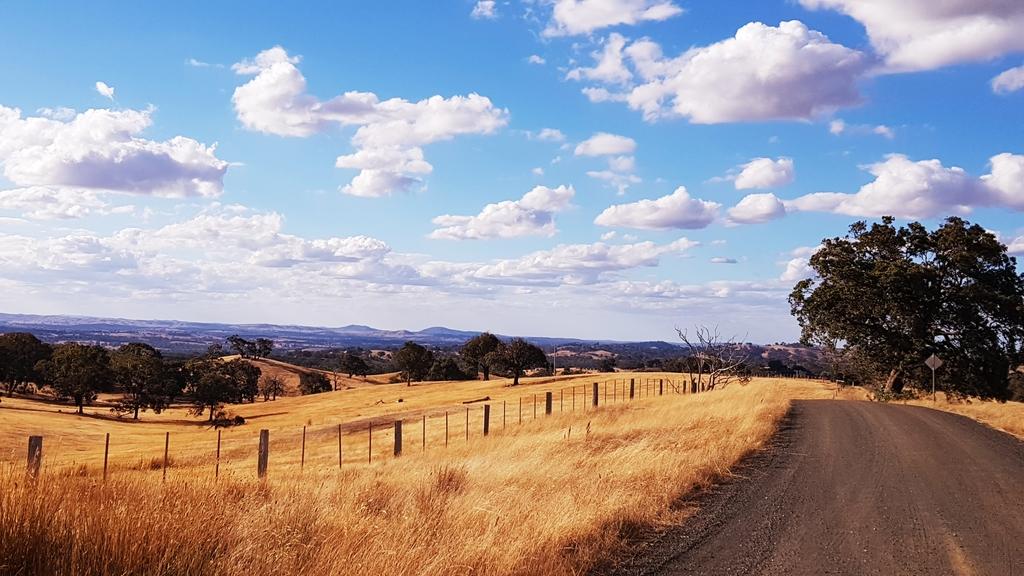 20190211_182809.jpg - 【澳洲.墨爾本】2019住宿推薦。Wirraway Farm Stay超美麗農場景致