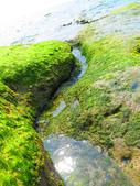 【台北】北海岸石門洞景點。美麗的貝殼砂海灘。熱門觀看夕陽&潮間帶景點:IMG_9702.JPG