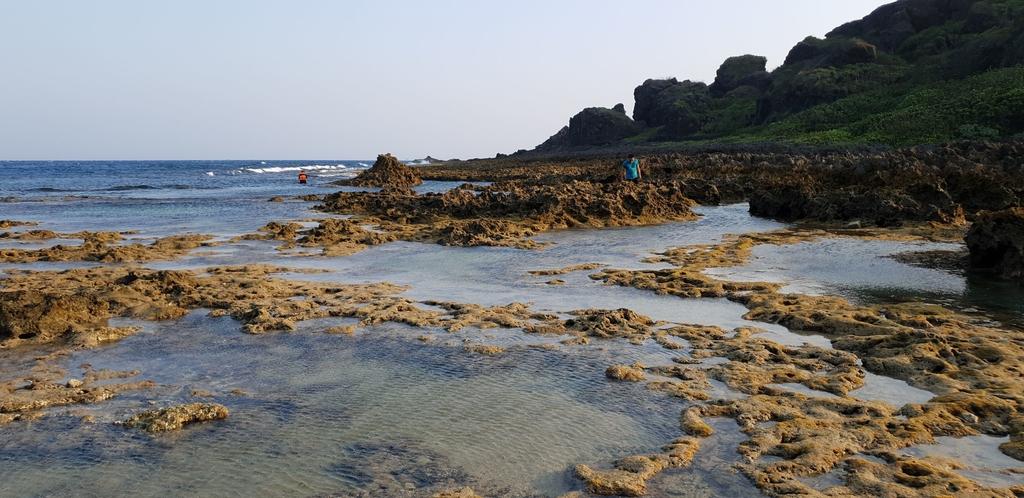 241301.jpg - 【屏東.恆春】小峇里島岩。記得帶肉泥。可以享受被貓咪包圍的感覺。這裡夕陽超美麗