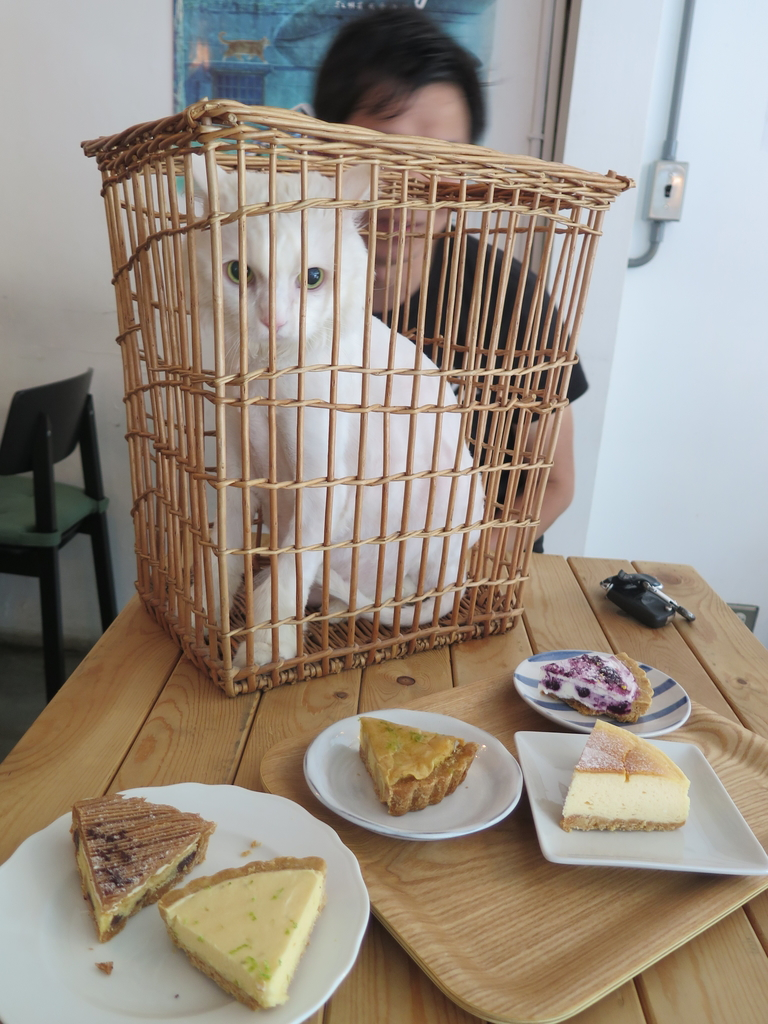 IMG_2774.JPG - 【台北.天母】芝山站下午茶推薦。我思.私宅甜點 w.a.s house溫馨手做甜點。歡迎貓咪寵物進入