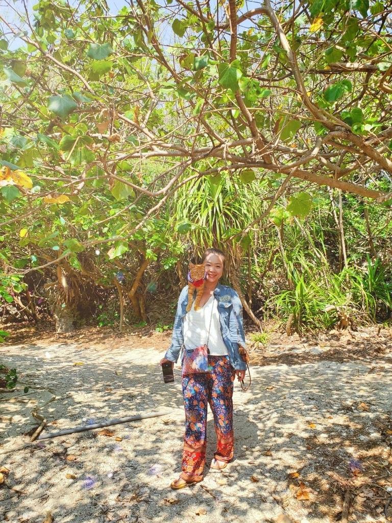 241284.jpg - 【屏東.恆春】小峇里島岩。記得帶肉泥。可以享受被貓咪包圍的感覺。這裡夕陽超美麗