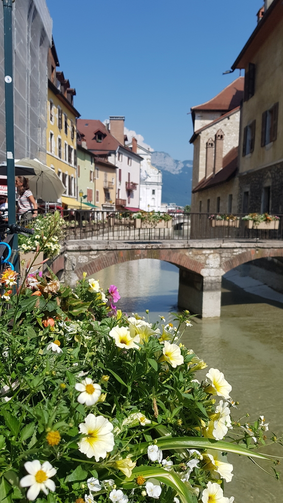 20190701_162401.jpg - 2019【法國】Annecy安錫或阿訥西: 阿爾卑斯山下最清澈湖泊小鎮