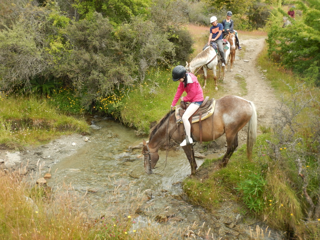 DSCN2722.JPG - 【紐西蘭.南島】2017騎馬體驗。Wanaka。MTCARDRONA STATION教練超美