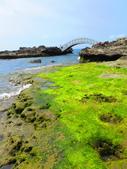 【台北】北海岸石門洞景點。美麗的貝殼砂海灘。熱門觀看夕陽&潮間帶景點:IMG_9709.JPG