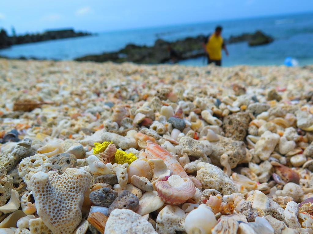 【台北】北海岸石門洞景點。美麗的貝殼砂海灘。熱門觀看夕陽&潮間帶景點:IMG_9589.JPG