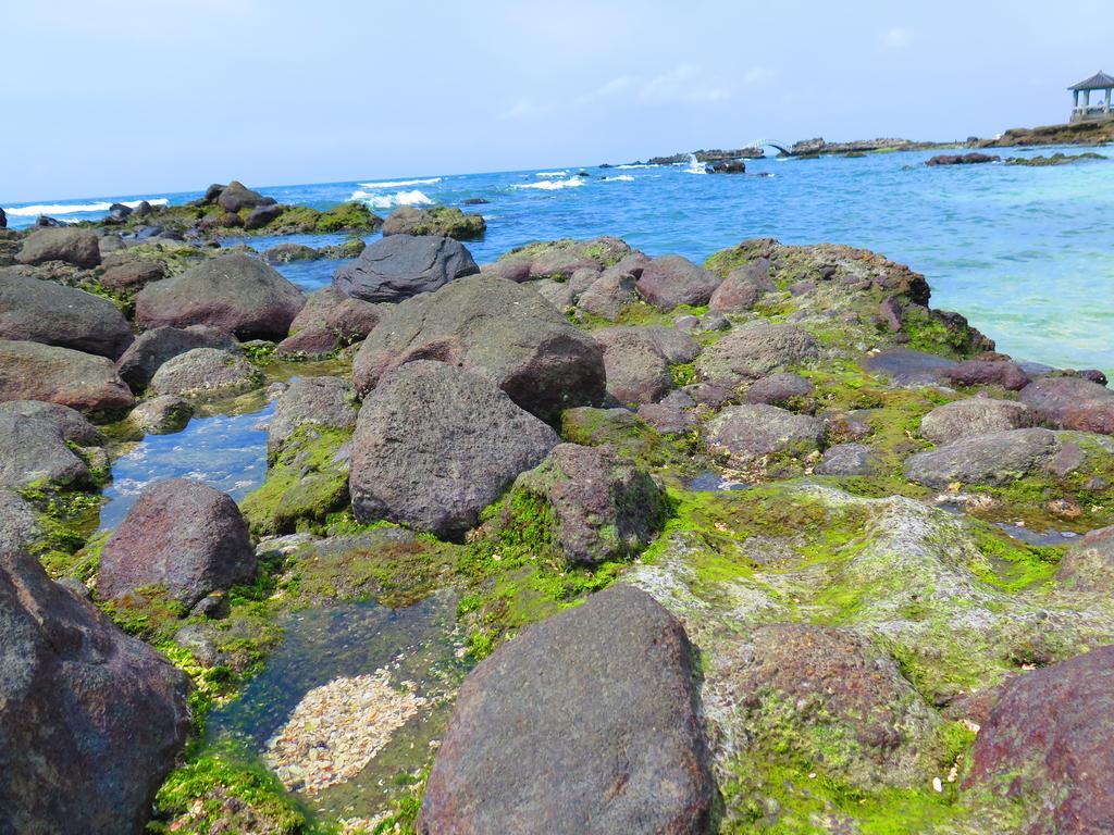 【台北】北海岸石門洞景點。美麗的貝殼砂海灘。熱門觀看夕陽&潮間帶景點:IMG_9601.JPG