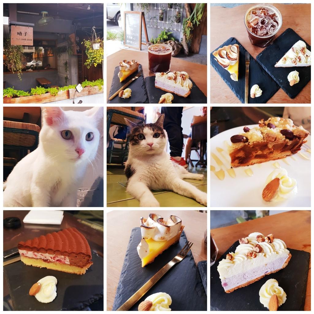 138798.jpg - 【花蓮.市區】下午茶推薦。唔子咖啡。有兩隻店貓。咖啡好喝甜點好吃不甜膩超推